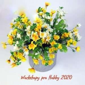 Workshopy pro Hobby 2020